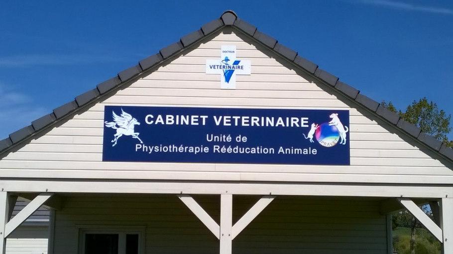 Suivez nous sur notre blog : www.cabinet-veterinaire-equin.com